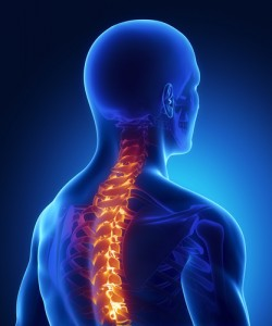A Phoenix personal injury attorney takes a look new findings that the elderly are experiencing far more spinal cord injuries than they were 20 yrs ago.