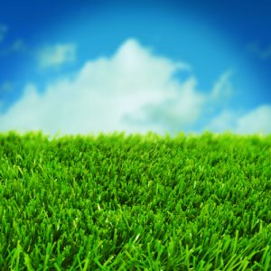 Company Knew about Turf Problems Before Selling It | Phoenix Personal Injury Lawyer